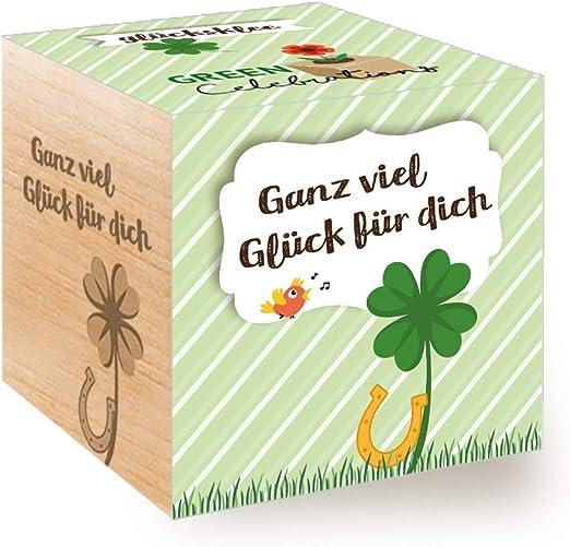 Set de Cultivo Fabricado en Austria tr/ébol de la Suerte Feel Green Celebrations Ecocube Idea de Regalo sostenible Cubo de Madera con Grabado l/áser /«Ganz viel Gl/ück f/ür Dich/»