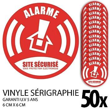 Lote de 50 pegatinas/pegatinas alarma seguridad: Amazon.es ...