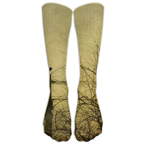 79dbe6b2a0 Amazon.com: Vintage Telegraph Pole Bird Unisex Compression Socks Sports 3D  Printed Stocking Running&Fitness Thich-high Long Length Socks: Clothing