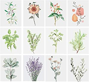 12pcs Canvas Wall Art Prints Frameless, Botanical Plant Wall Decor Pictures for Living room Bedroom Home Decor (Plant)