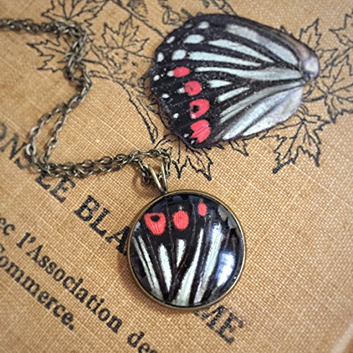 Real Butterfly Wing Necklace, Hestina assimilis, Mori Girl, Pressed, Resin, Insect, Farewell, Luck, Bronze, Boho Wedding, Friendship, Wish