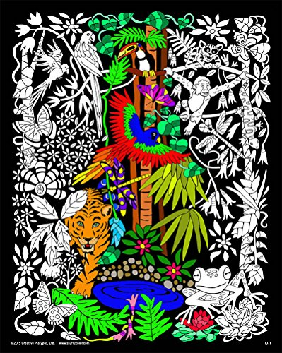 Rainforest - 16x20 Fuzzy Velvet Detailed Coloring Poster -
