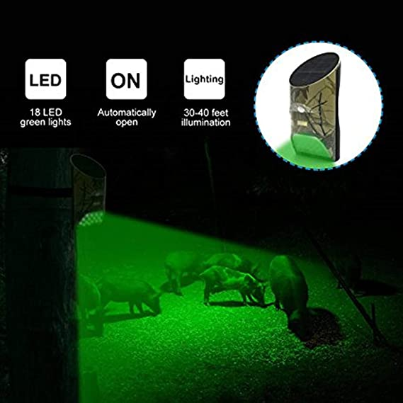 Amazon.com: Lilbees Solar Green Feeder Lights with Motion Activated for Hog Pig Predator Coyote Varmint Deer Night Hunting(FL1-P2)(Pack of 2): Sports & ...