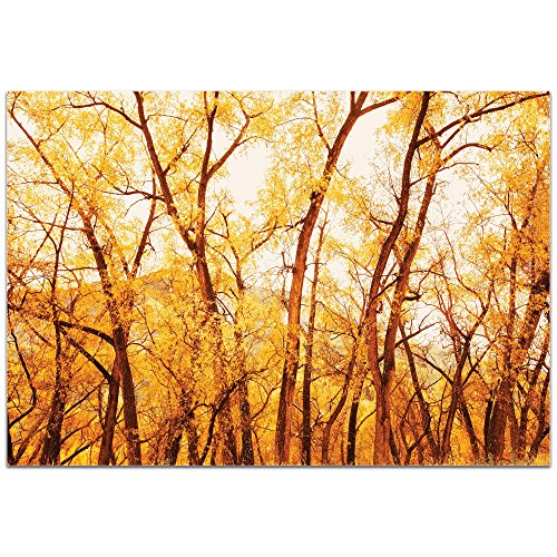 Landscape Photography 'Fall Trees' by Meirav Levy - Autumn Nature Art Contemporary Fall