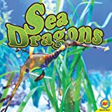 Sea Dragons, Pamela McDowell, 1616908319