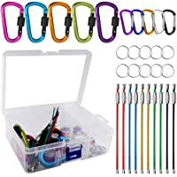 YuCool 10 Pack Aluminum D-Ring Carabiners, D Shape Keychain Clips Hook Spring-Loaded for Camping Hiking Fishing, with 10 Stainless Steel Wire Keychains, 10 Key Rings - Multi-Color