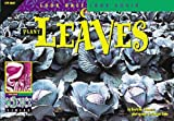 Plant Leaves, David M. Schwartz, 1574713280