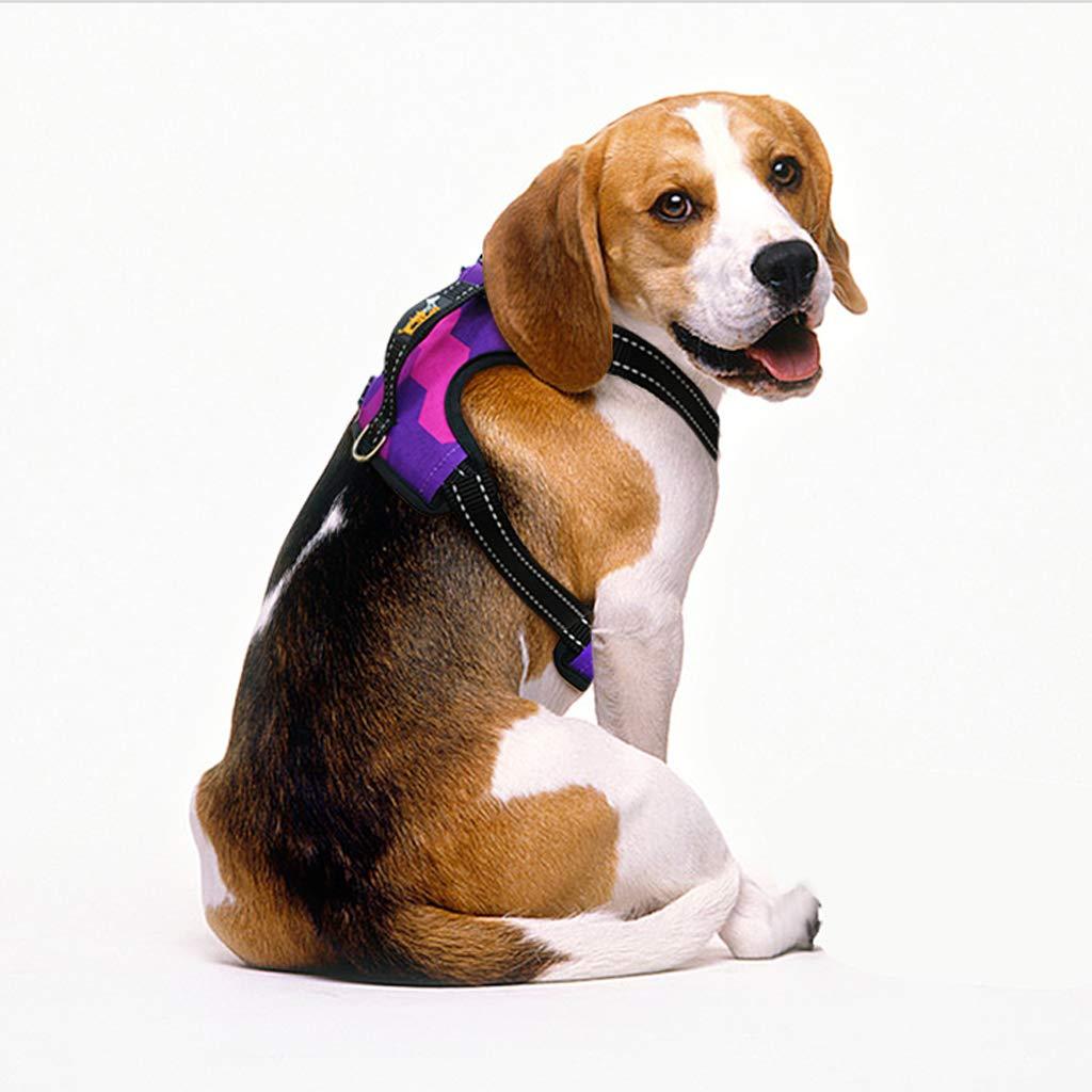 AA-pet vest harness Correa de Perro para Mascotas Correa de Perro ...