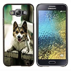 TECHCASE---Cubierta de la caja de protección para la piel dura ** Samsung Galaxy E5 E500 ** --Divertido admiten perros en un banco
