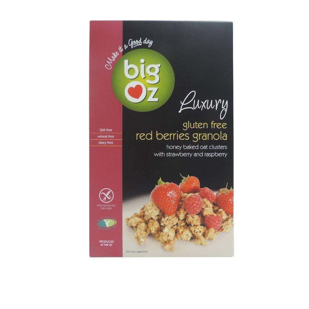 Big Oz - Luxury Red Berries Granola - 450g: Amazon.es ...