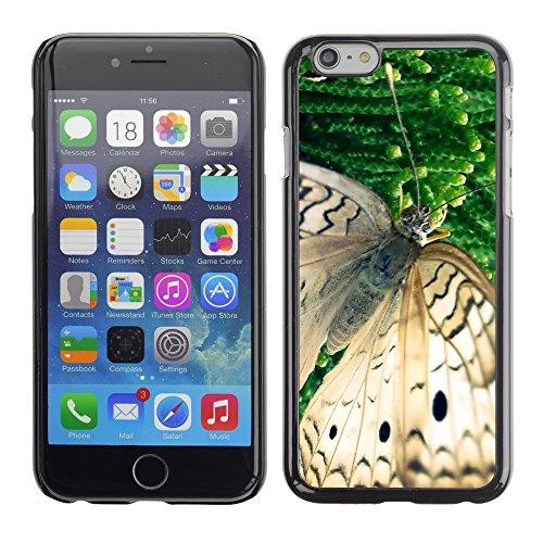"Premio Sottile Slim Cassa Custodia Case Cover Shell // V00003048 papillon // Apple iPhone 6 6S 6G 4.7"""