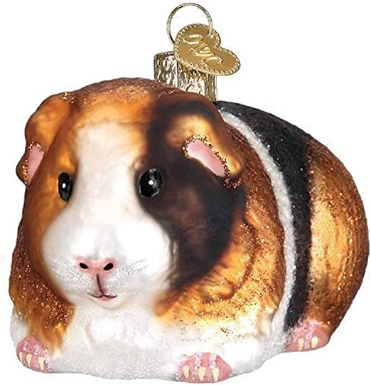 Amazon Com Old World Christmas Guinea Pig Home Kitchen
