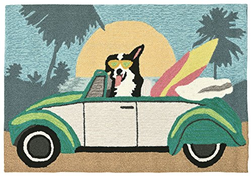- Liora Manne FT123A75044 Folly Surfer Dog Rug, Indoor/Outdoor, Pastel