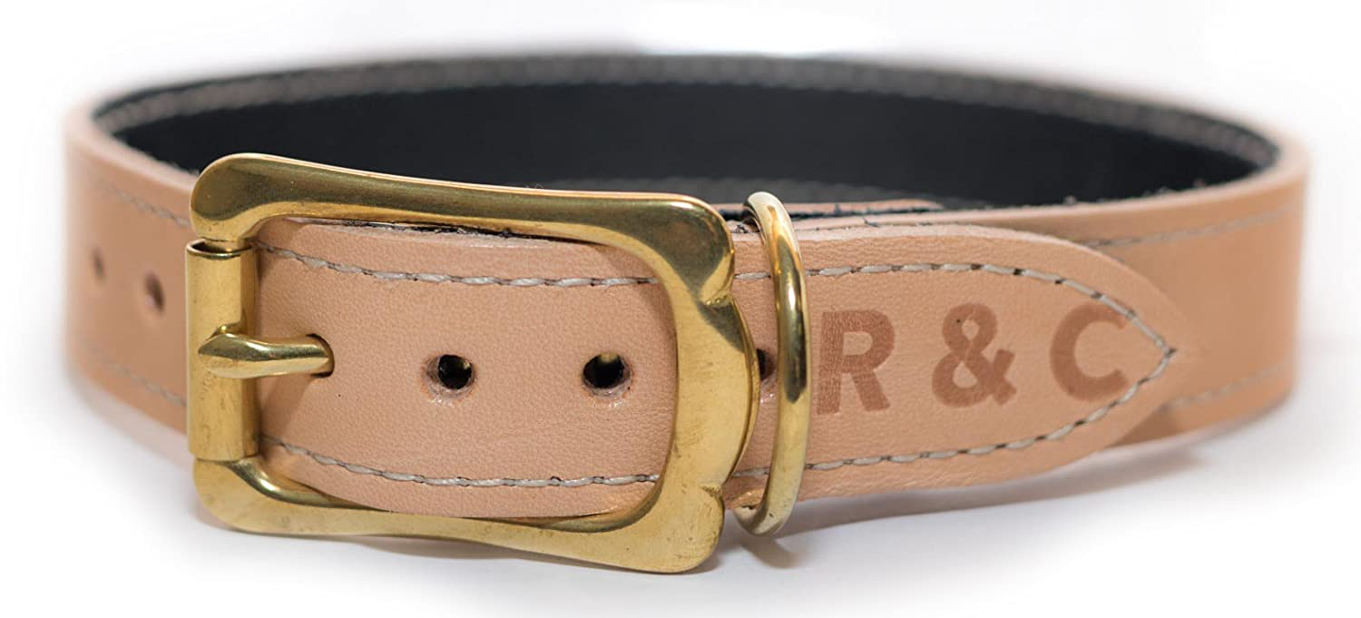 RALPH & CO DOG COLLAR LEATHER VERONA OYSTER OYSTER OYSTER - XLARGE - RAL0260 b7d8e3