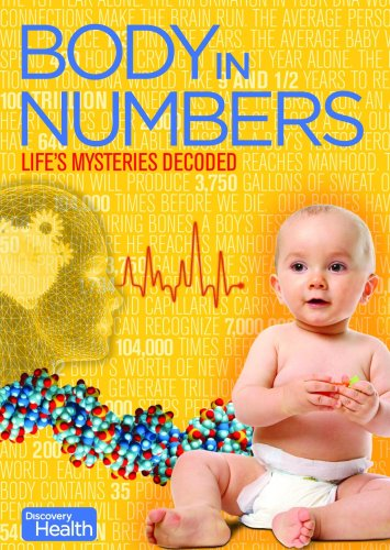Body in Numbers - Discount Number Student