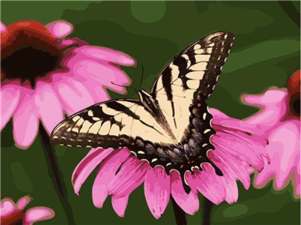 DIY Cuadro al óleo con números pintar por números kit Mariposa recogiendo flores pintura al óleo digital para adultos y niños, pintura al óleo lienzo, decoración para el hogar, 40 x 50 cm(Sin marco)
