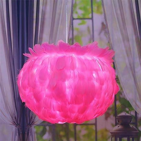 Amazon.com: LUCKY CLOVER-AFeather Ceiling Pendant Light Shade Floor ...