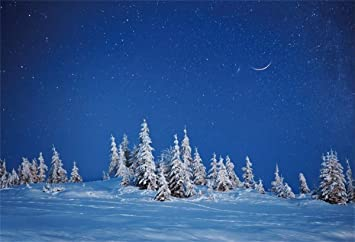 Amazon Com Yeele Winter Starry Night Backdrop Snowy Trees On The