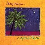 Captiva Moon