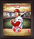 "Johnny Bench Cincinnati Reds Framed 15"" x 17"" Hall of Fame Career Profile - MLB Player Plaques and Collages"