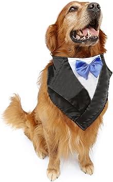 Amazon.com: nacoco boda Esmoquin grande perro bufanda ...