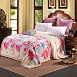 Double thick Wedding blankets and thick winter blankets double double layer flannel winter warm red marriage,180×220/5.6 catty, shine a yellow