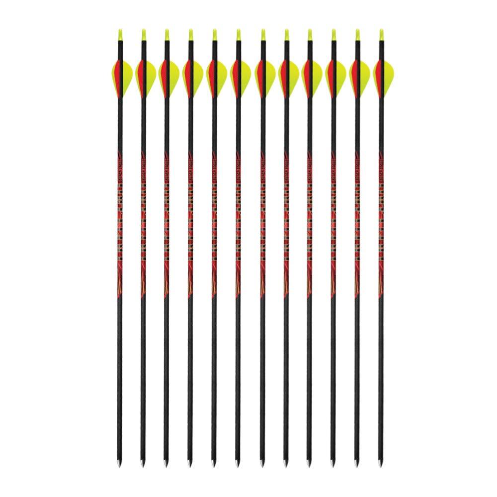 Black Eagle Outlaw 350 Spine Fletched Carbon Arrows (32'' Shaft.005'', ± 2 Grain) 12-Pack (2 Items) by Black Eagle