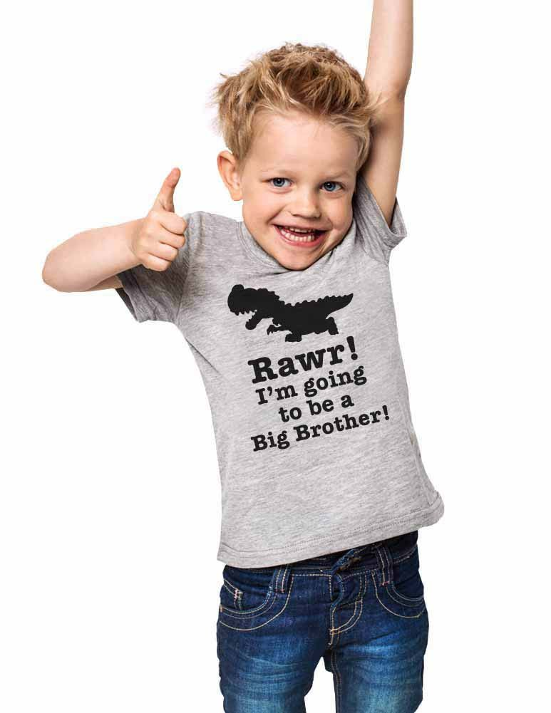 Rawr! I'm going to be a Big Brother! - dinosaur Baby birth surprise pregnancy toddler shirt (18 Months Infant Shirt, Heather Grey)