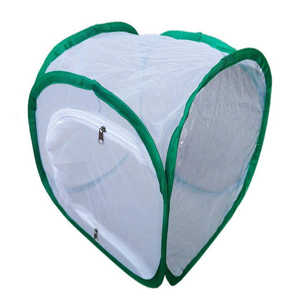 Convient pour l?Alimentation de Petits Insectes etc. Papillons Roebii Terrarium Pliable pour Cages /à Insectes et /à Papillons Ouvrez Une bo/îte /à moustiquaire g/éante,Facile /à Plier et /à Transporter
