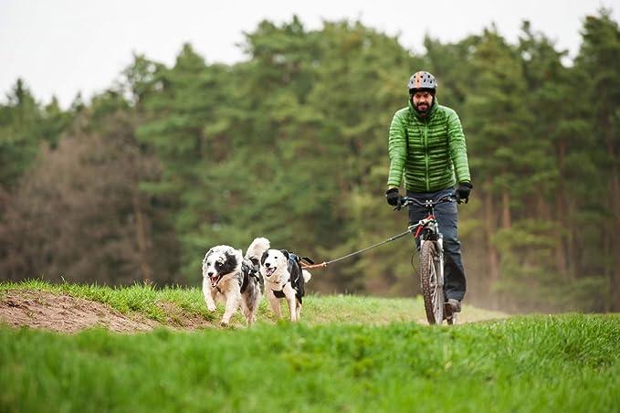 Arnés de tracción cruzado en la espalda, para perros, para usar ...