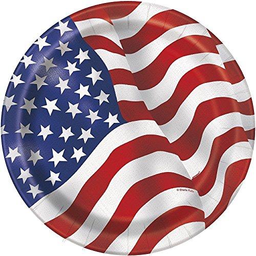 8 Pcs US American Flag Dinner Plates,8.875