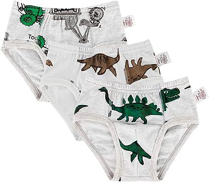GEMVIE 3 Packs Boys Girls Cotton Soft Boxer Briefs Underwear Cute Cartoon Dinosaur Knickers Briefs Boxer Shorts Underpants
