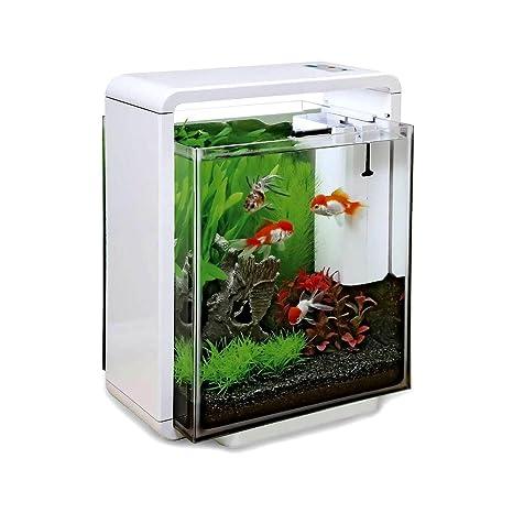 Superfish Home 25 X L Acuario (Blanco) – incluyendo luces LED y filtro de agua