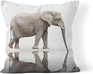 Wesbin Throw Pillow Cover Animal Drinking Elephant Loxodonta Africana Jungle Water Healthcare Oasis Wild Snout New Living Hidden Zipper Home Sofa Decorative Cushion 20x20 Inch Square Design Print