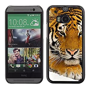 Graphic4You Tiger Animal Design Hard Case Cover for HTC One (M8)
