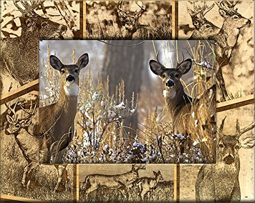 Giftworks Plus SPR5008 Whitetail Deer, Alder Wood Frame, 5 x 7 In from GiftWorksPlus