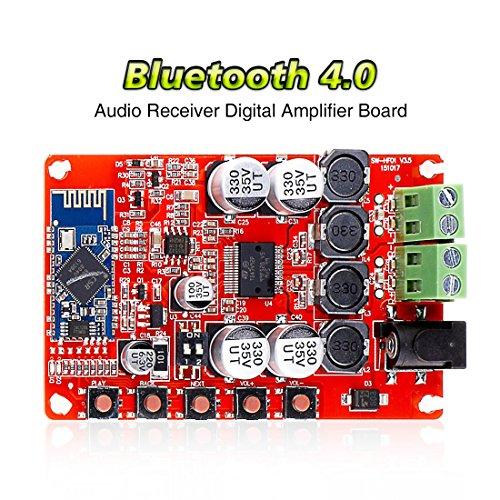 Amplifier Module - 6
