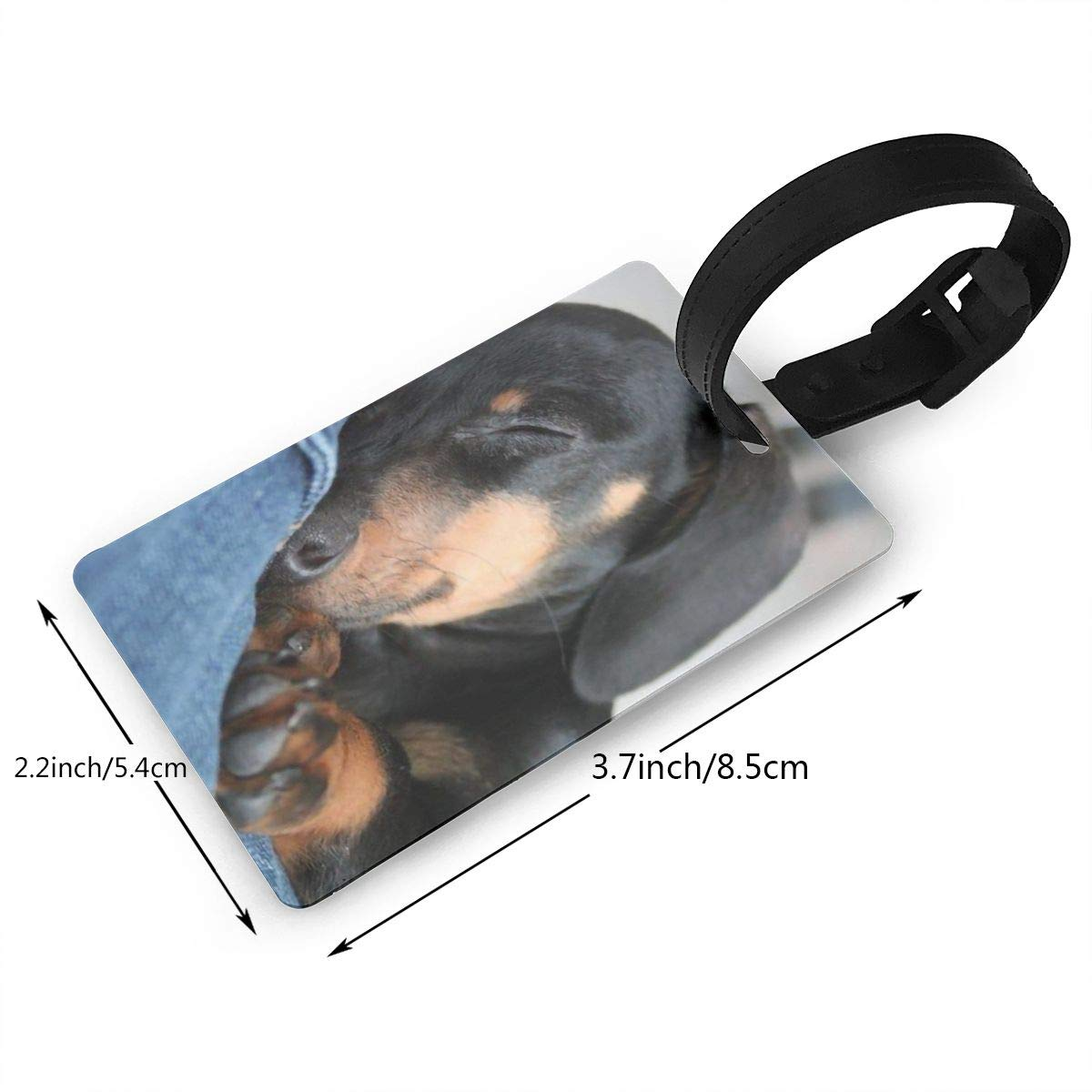 Dachshund Wiener Dog Cruise Luggage Tag For Travel Tags Accessories 2 Pack Luggage Tags
