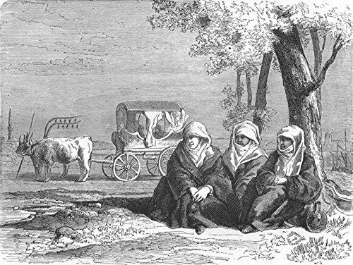 greece-travellers-reposing-banks-of-lake-dojran-1880-old-print-antique-print-vintage-print-greece-ar