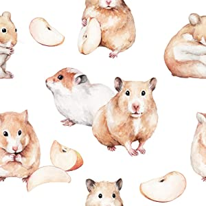 5D Diy Diamond Painting Kits Animal Sketch Cute Little Red Hamster Apple Slice Funny Animal Watercolor Of A Full Drill Painting Arts Craft Canvas for Home Wall Decor Full Drill Cross Stitch 12X16 Inch