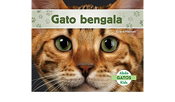 Gato Bengala (Bengal Cats) (Spanish Version) (Gatos/ Cats) (Spanish Edition): Grace Hansen: 9781532101953: Amazon.com: Books