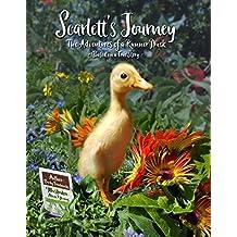 Scarlett's Journey: The Adventures of a Runner Duck