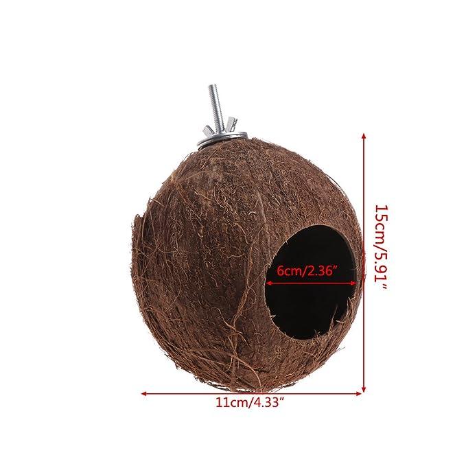 ... Nido de pájaros Nido de cáscara de Nuez de Coco para periquitos Budgerigar y pequeño Animal doméstico con Tornillo: Amazon.es: Productos para mascotas