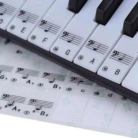 scoolr profesional Nota adhesivo transparente 49 61 clave electrónico de 88 teclas Piano Pentagrama adhesivo