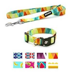 azuza Dog Collar and Leash Set