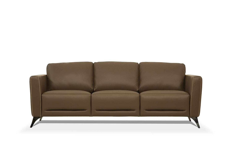 Amazon.com: ACME Furniture 55000 Malaga Sofa, Taupe Leather ...