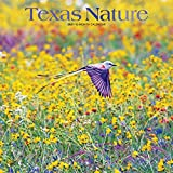 Texas Nature 2021 12 x 12 Inch Monthly Square Wall Calendar with Foil Stamped Cover, USA United States of America Southwest State Wilderness