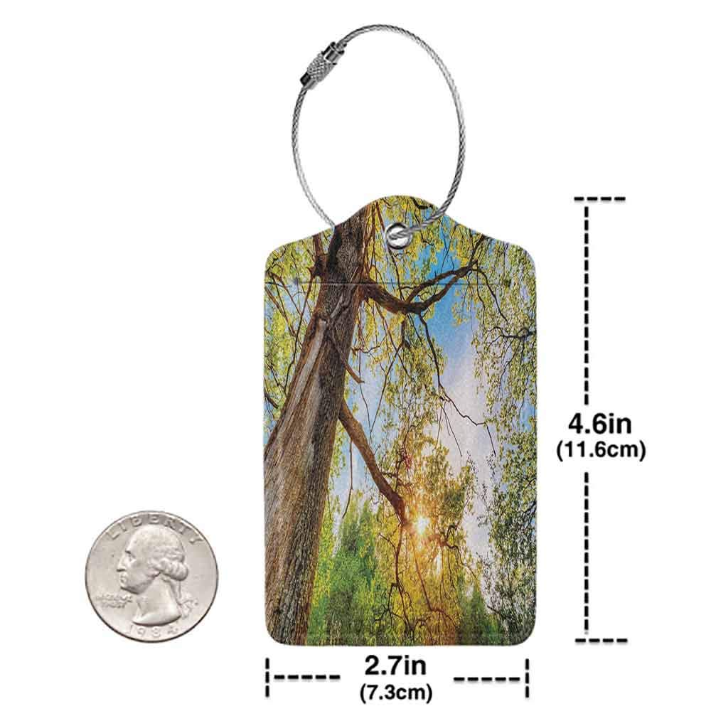 Multi-patterned luggage tag Forest Home Decor Vibrant Summer Lights above Oaks Rural Angle Freshness Sky Panorama Art Double-sided printing Green Brown W2.7 x L4.6