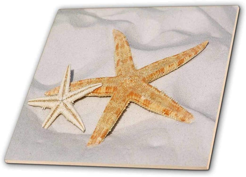 Ceramic Tile 3dRose Print of Starfish On Beach with Ocean ct/_214474/_2 6-Inch