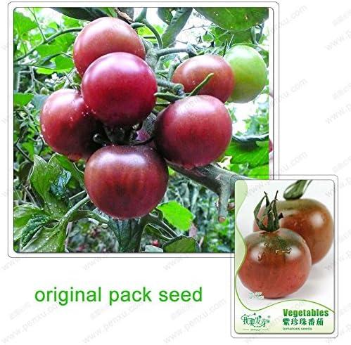 25 semillas / pack, semillas de tomate Negro Perla, semillas de ...